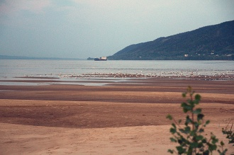 Вид на Волгу и Жигули с острова Середыш. Фото Лумир Кус