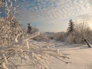 Зимой. фото В. Лейриха