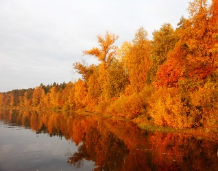 Озеро Старица. Фото Лачоха Е.П.