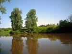Река Прость. Граница заповедника. Фото Целищевой Л.Г.
