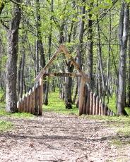 Экологическая тропа Таллы (фото: Полина Япрынцева)
